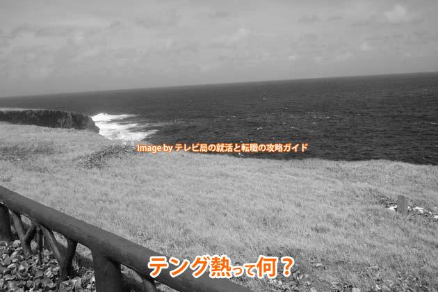 テング熱って何?70年ぶりの国内感染から見えてくる日本の変化を連想してみよう