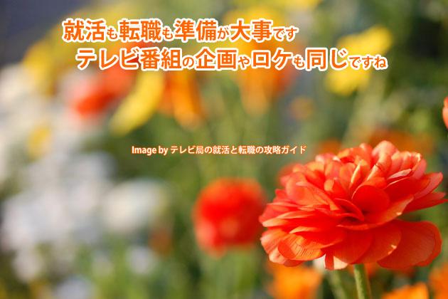 企画やロケも準備が大事!東京荒川マラソンが中止になった理由とは?